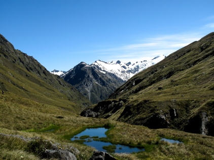 Lone tarn in the Southern Alps