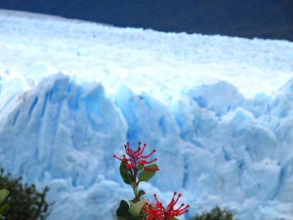 Fire and ice. Perito Moreno, Argentine Patagonia.